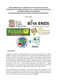 document/cover_joint_submission_Pagina_1