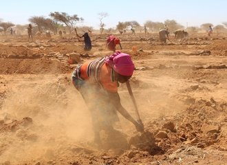 Preparing_the_soil_for_regeneration_Niger