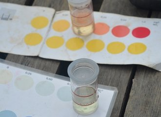 6 - water samples can be assessed with the use of these simple tools