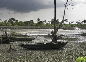 the Niger Delta has been polluted by extractive activities for decades