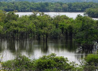 Rio Urubu, Amazonas, Brazil, 2010 Photo on Flikr by Katja Schulz