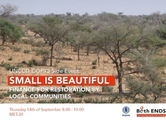Side event: Small is beautiful