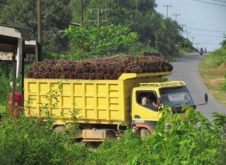 truck_with_oil_palm_fruits.JPG