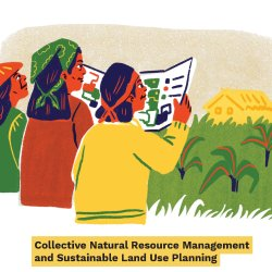 Cover 3. Collective Natural Resource Management and Sustainable Land Use Planning