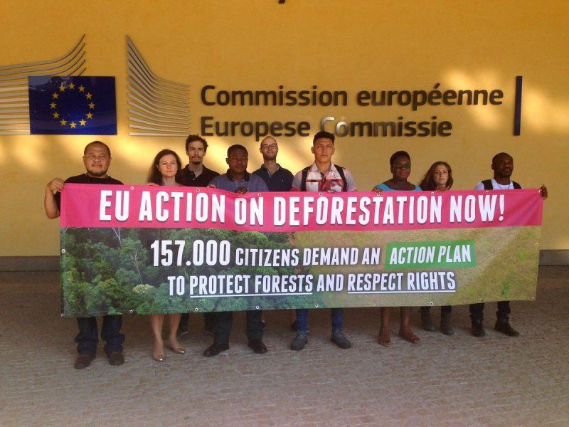 action on deforestation in Brussels - 29 June 2018