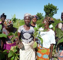 mediaitem/Woman_farmers_in_Ghana