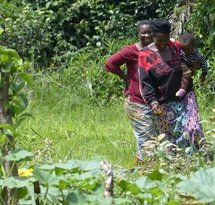 mediaitem/Women_in_Mbiame_Cameroon_have_planted_trees_to_bord